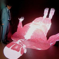 El primer cuerpo humano virtual en cuatro dimensiones